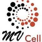 MV Cell