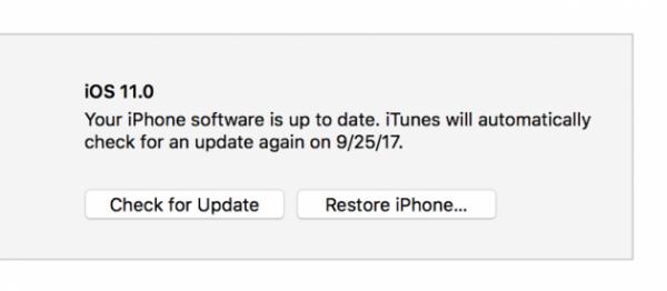 187226.401628-restaurar-iPhone.thumb.png.68eb82a5b46415c3b03e0f712554865a.png