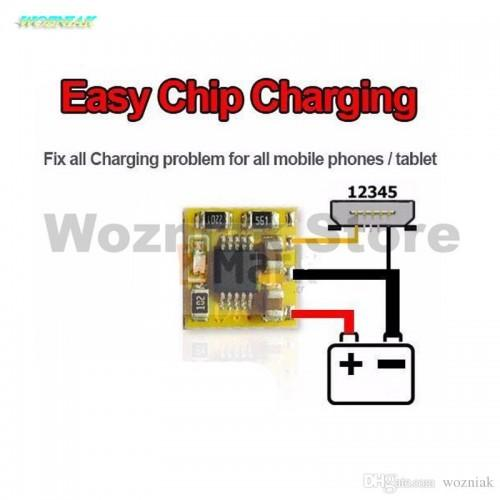 wozniak-easy-clip-charging-ic-for-iphone-500x500.jpg