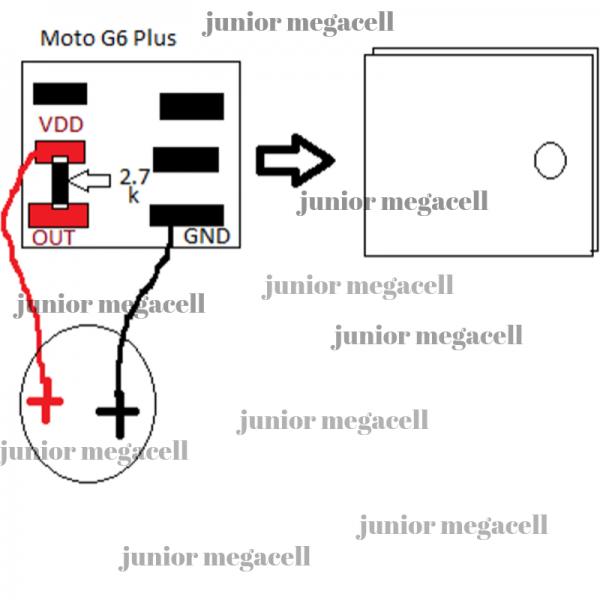 junior megacell.png